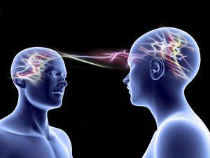 I neuroni specchio e le dinamiche relazionali volgere un conflitto in un accordo gruppo galgano - Neuroni a specchio ...